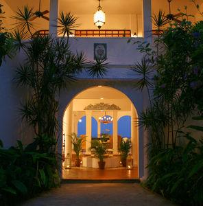 Horned Dorset Primavera, Puerto Rico, Puerto Rico, picture 3