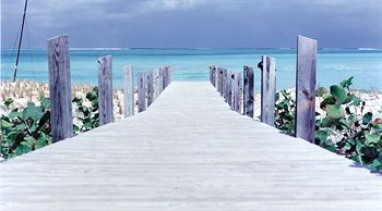 Parrot Cay, Turks and Caicos, Turks and Caicos, picture 7