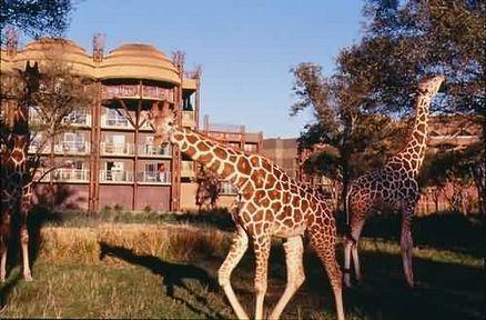 Disney's Animal Kingdom Lodge, Lake Buena Vista, USA, picture 2