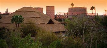 Disney's Animal Kingdom Lodge, Lake Buena Vista, USA, picture 39