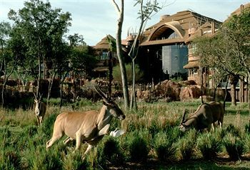 Disney's Animal Kingdom Lodge, Lake Buena Vista, USA, picture 42